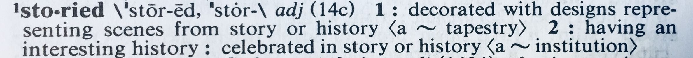 your storied life dictionary.jpg