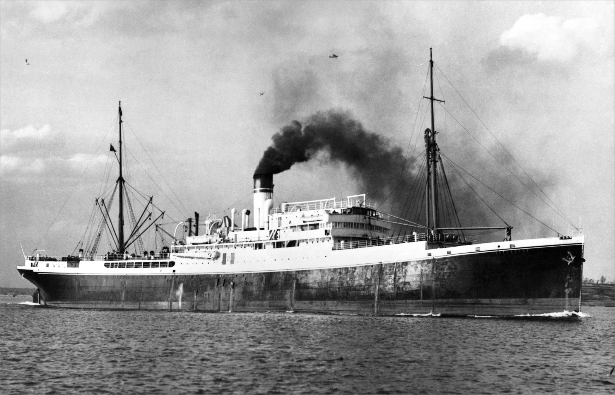 Belvedere Steamship