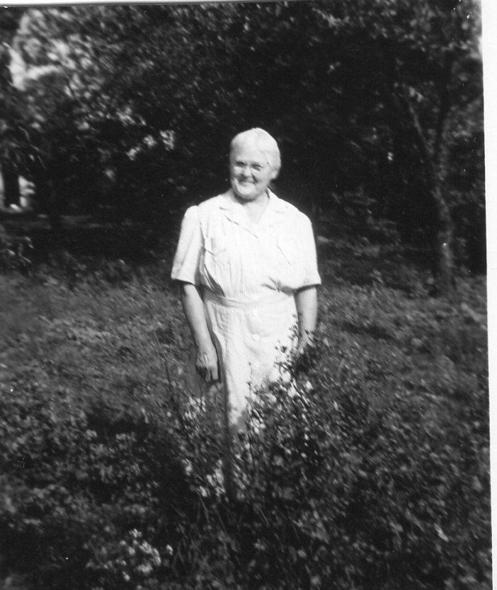 Laura Victoria Kallman Carlson (1875-1961)    Photo credit:    Find a Grave Contributor, Danya
