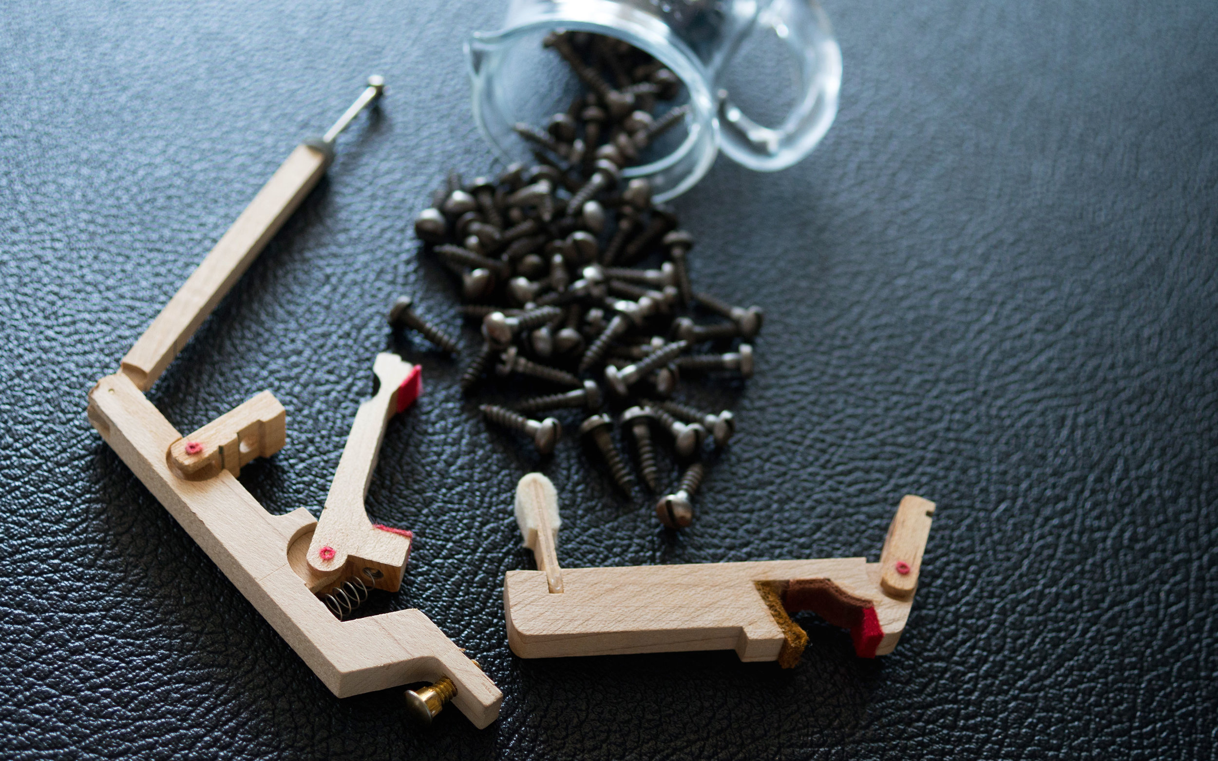 Copy of Wurlitzer screws and whip assembly