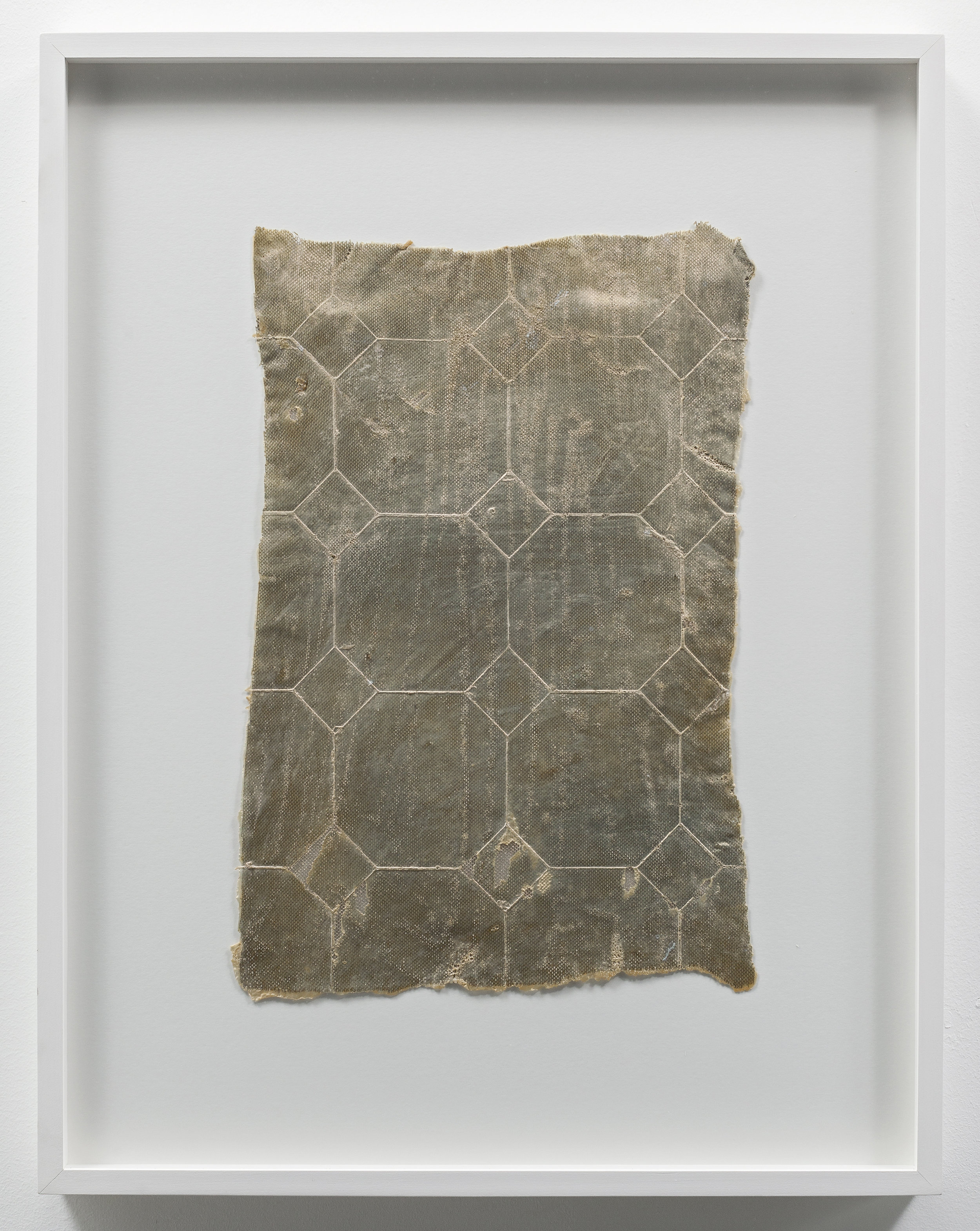 Heidi Bucher ,    Bodenhaut Borg , 1976, Caoutchuc skin and mother-of-pearl, 53 x 29 cm