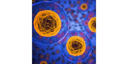 at-a-ten_cells.png