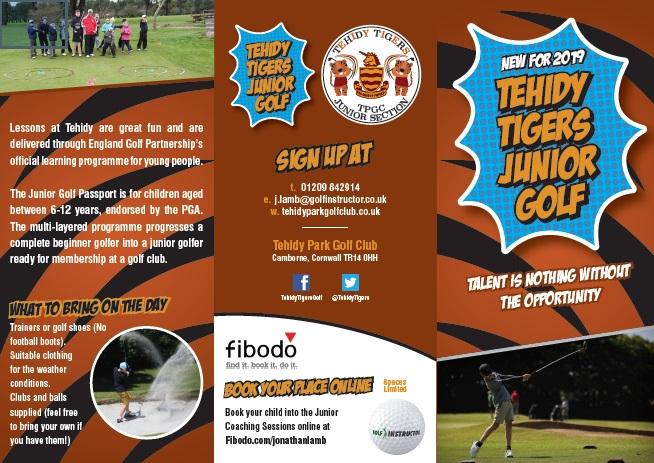 Tehidy Tigers Leaflet Page 1.jpg