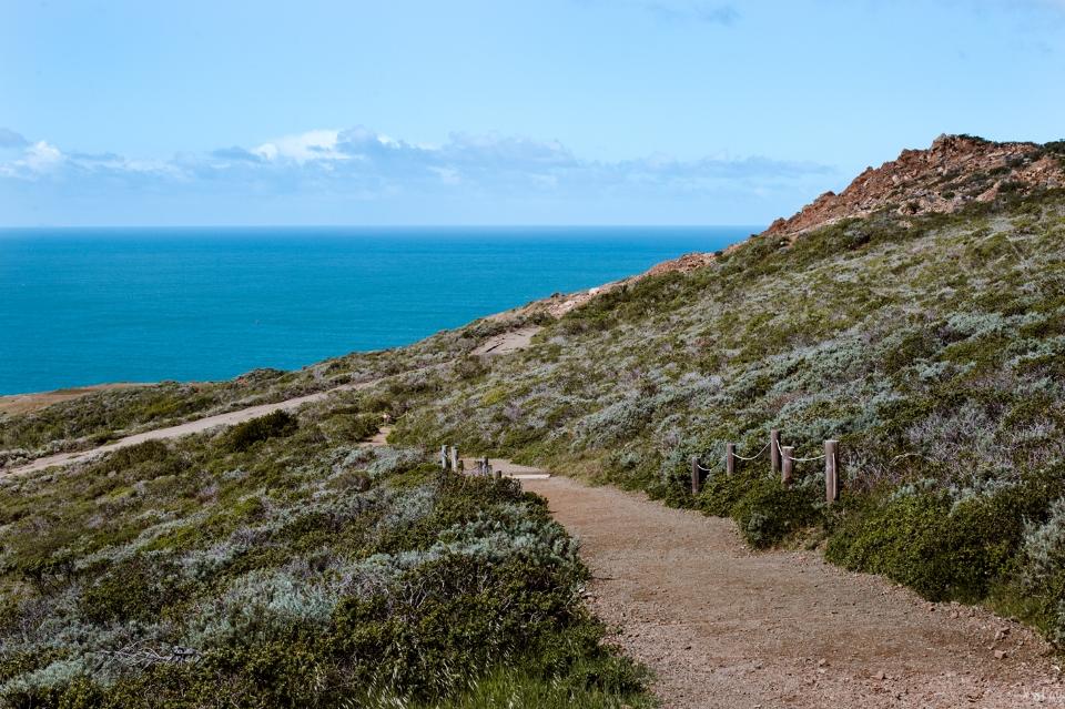 Wolf-ridge-loop-marin-headlands.jpg
