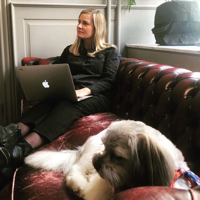 Fredagshäng i soffan!  #byråhund #Graviz #fredag