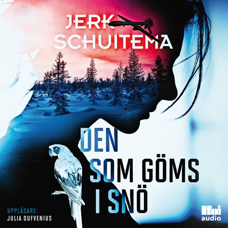 Den_som_goms_i_sno_cover_AUDIO.jpg