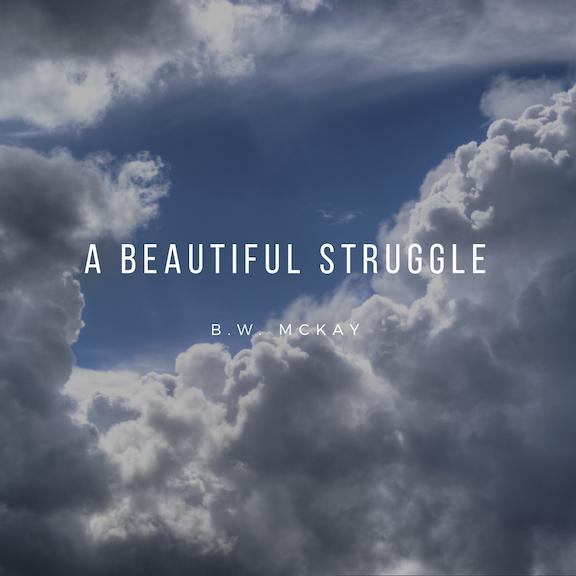 beautiful struggle 2.png