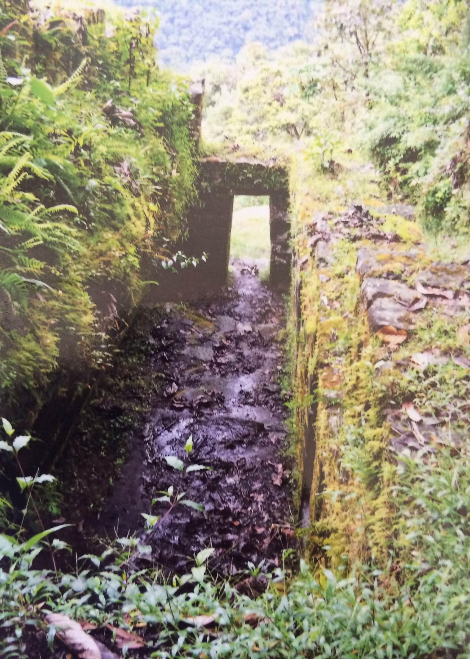 Step through the doorway to  A Divine Awakening in Peru.