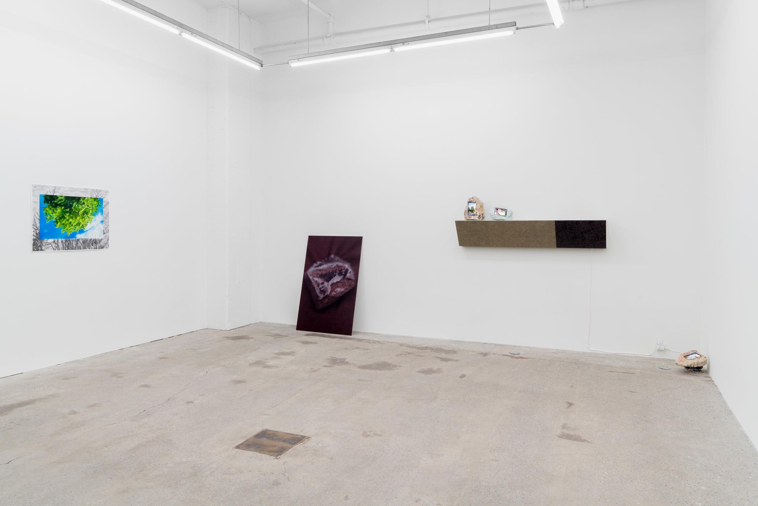 GalerieNicolasRobertNovembre2018 (11 of 27).jpg