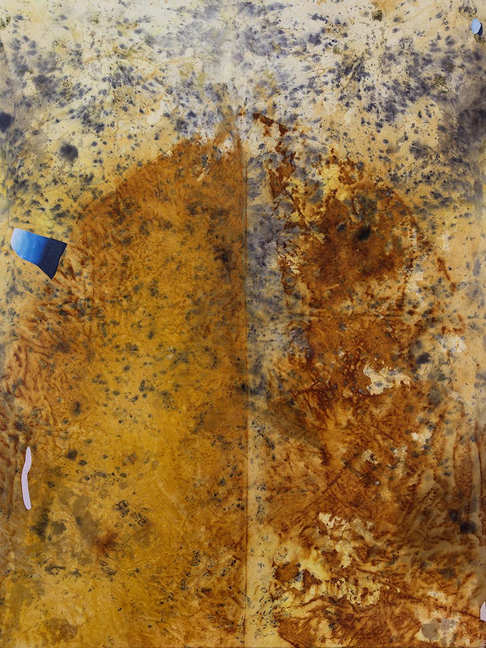 """Gillian King,  Grotto , 2019, médium à cire froide, fil de coton, huile, pigments bruts, sédiments de rouille et divers matériaux végétaux (peau d'oignon, rose, sumac et fleurs sauvages) sur toile, 48"""" x 36"""" (122 x91 cm)"""