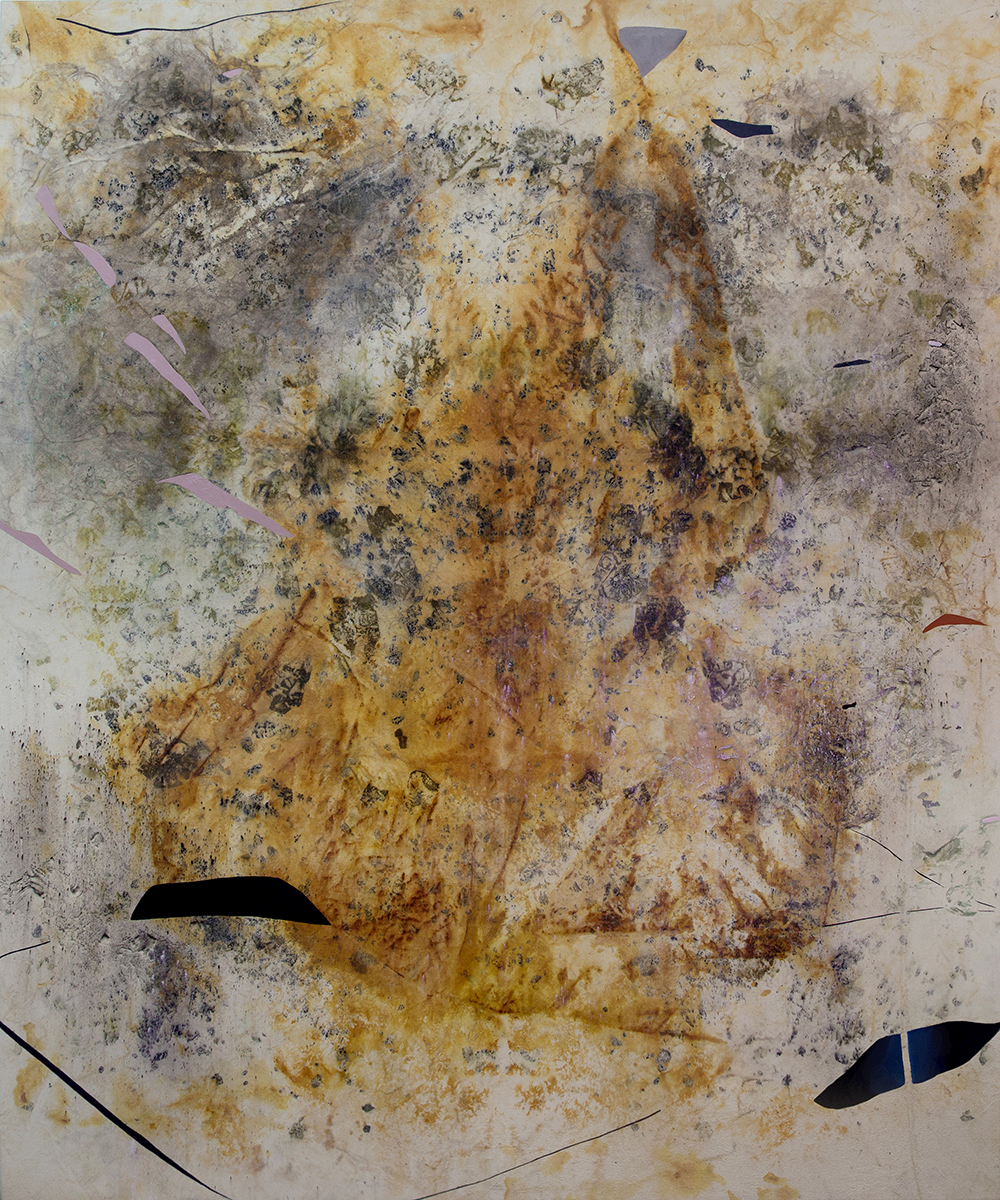 "Gillian King,  Phantom Limbs,  2019, médium à cire froide, huile, pigments bruts, sédiments de rouille et divers matériaux végétaux (peau d'oignon, rose, sumac et fleurs sauvages) sur toile, 72"" x 60"" (183 x152 cm)"