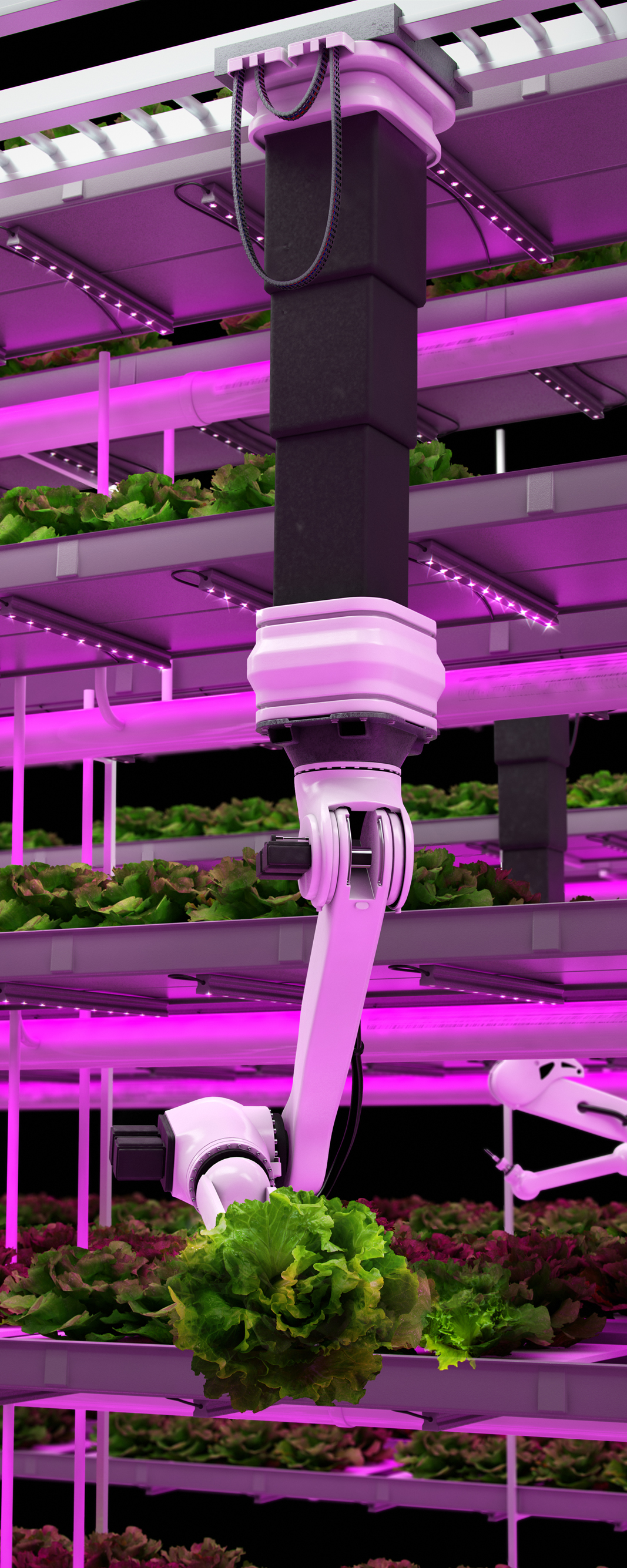 Vertical Farming.jpg