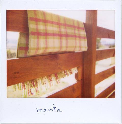 manta2.jpg