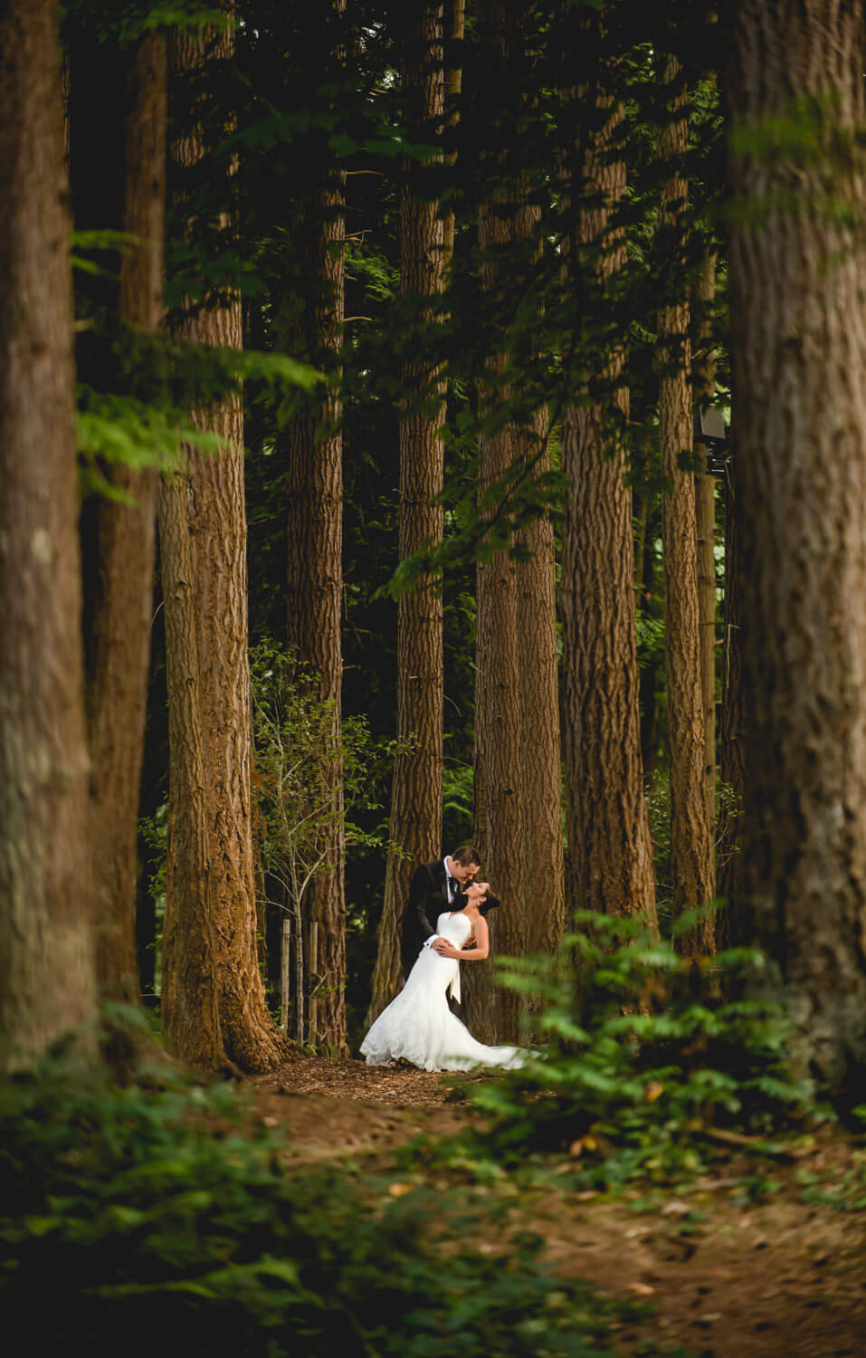 kissing-bride-groom-forest.jpg