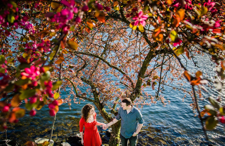spring-flowers-canal-love.jpg
