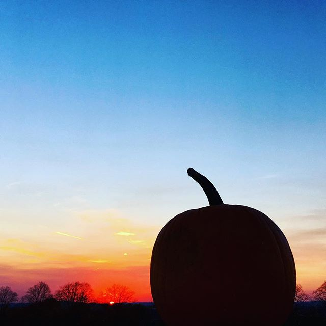 🎃🍂🍁This Lucky Pumpkin @ The Belvedere Project 🍁🍂🎃 #thedownsgroup #thebelvedereproject #mendhamnj #mendhamnjrealestate #architecture #view #milliondollarlisting #milliondollarview #fall #fallfeels #pumpkin #psl