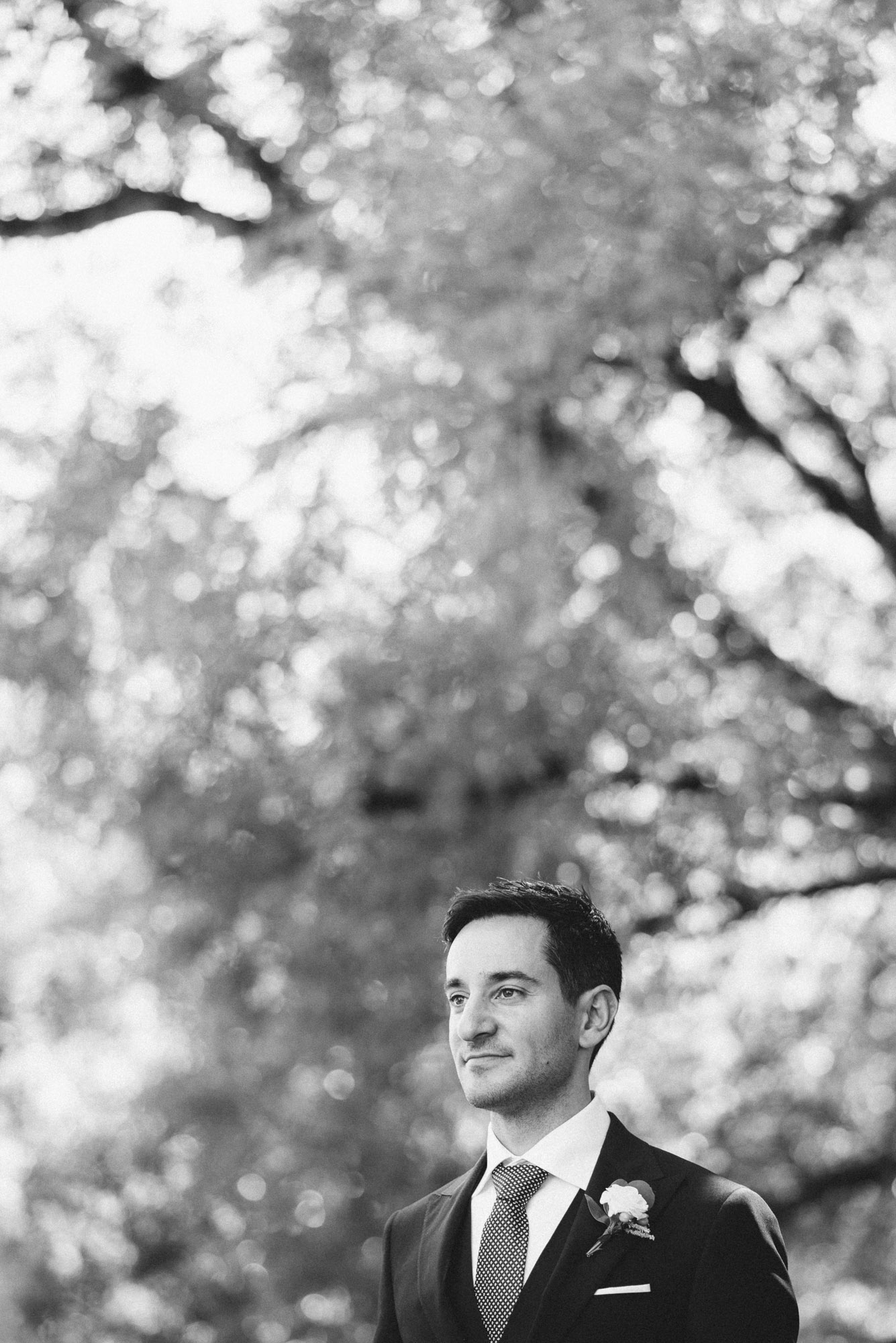 Groom at the park