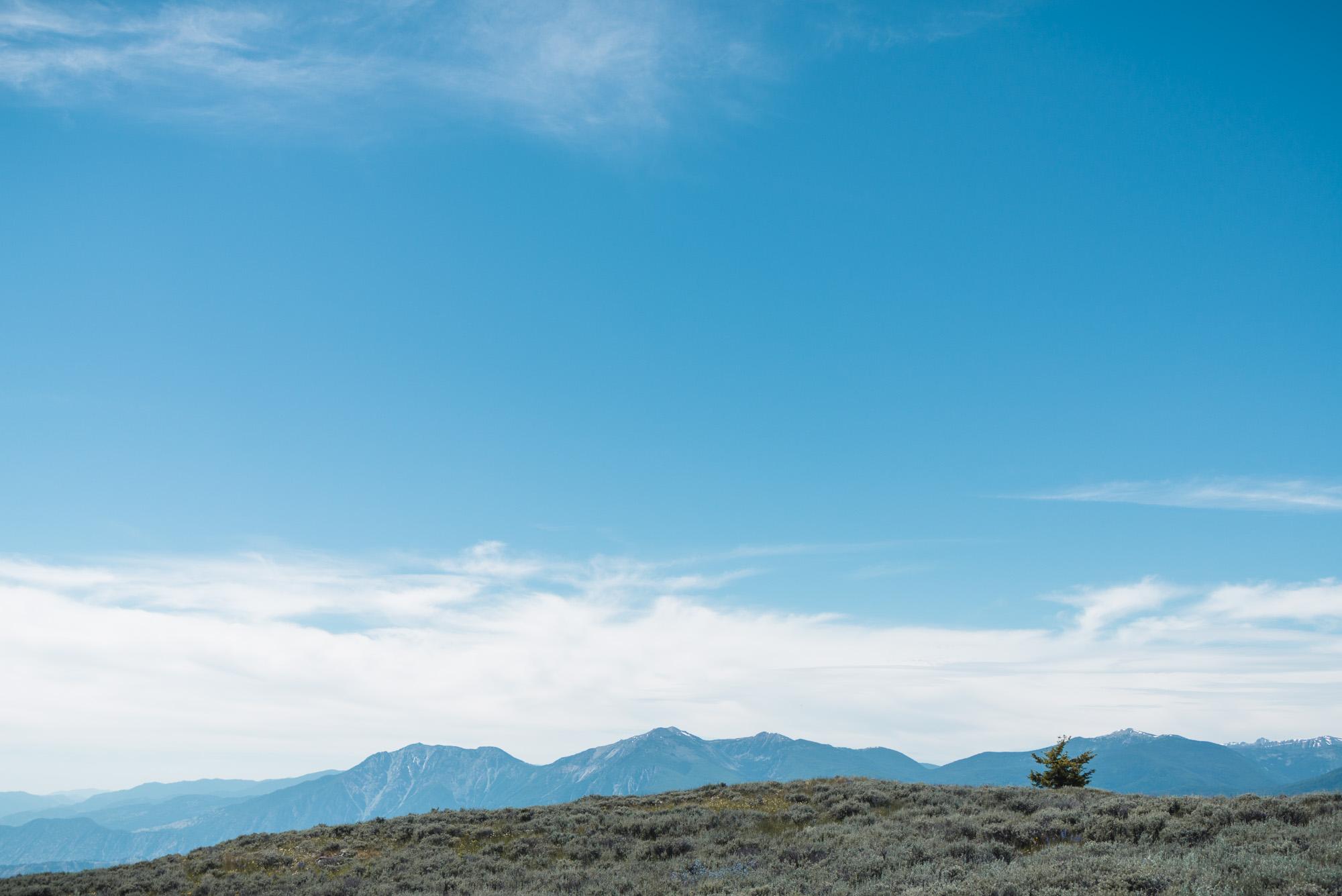 Mount Kobau landscape