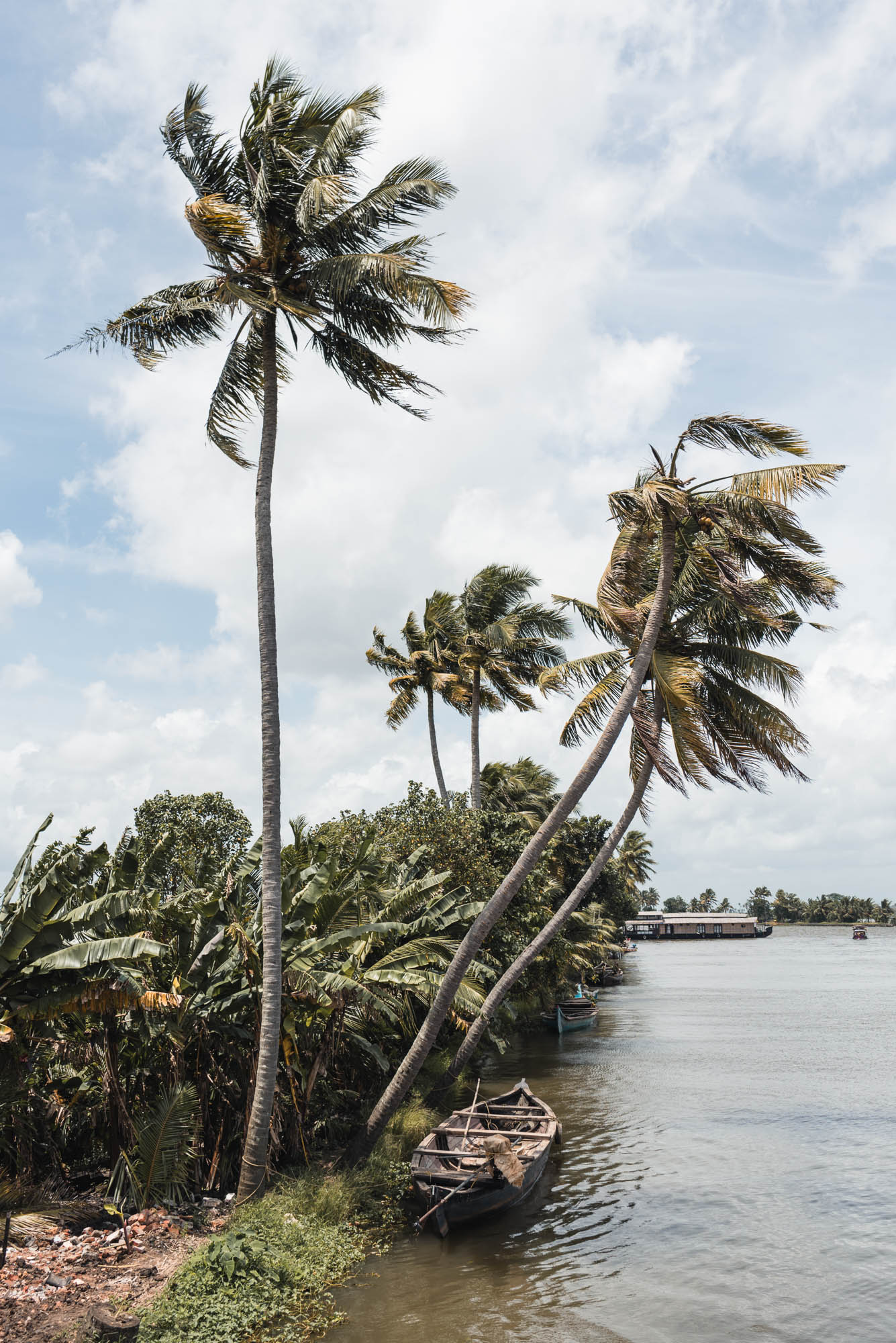 Palms at Alleppey Backwaters houseboat cruise