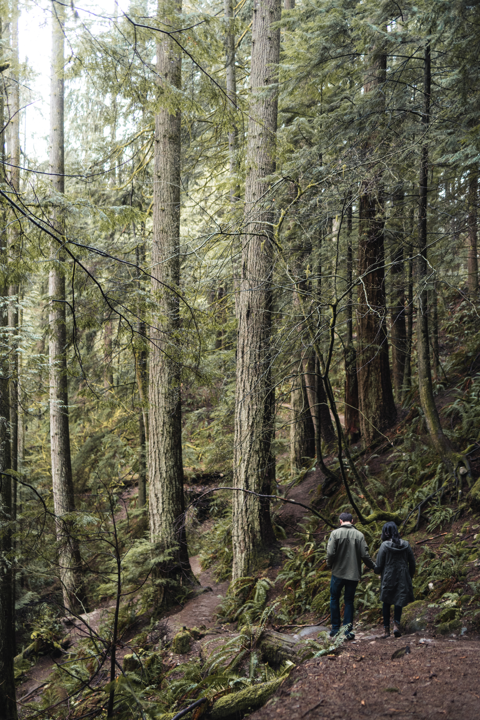 Couple walking through forest trail
