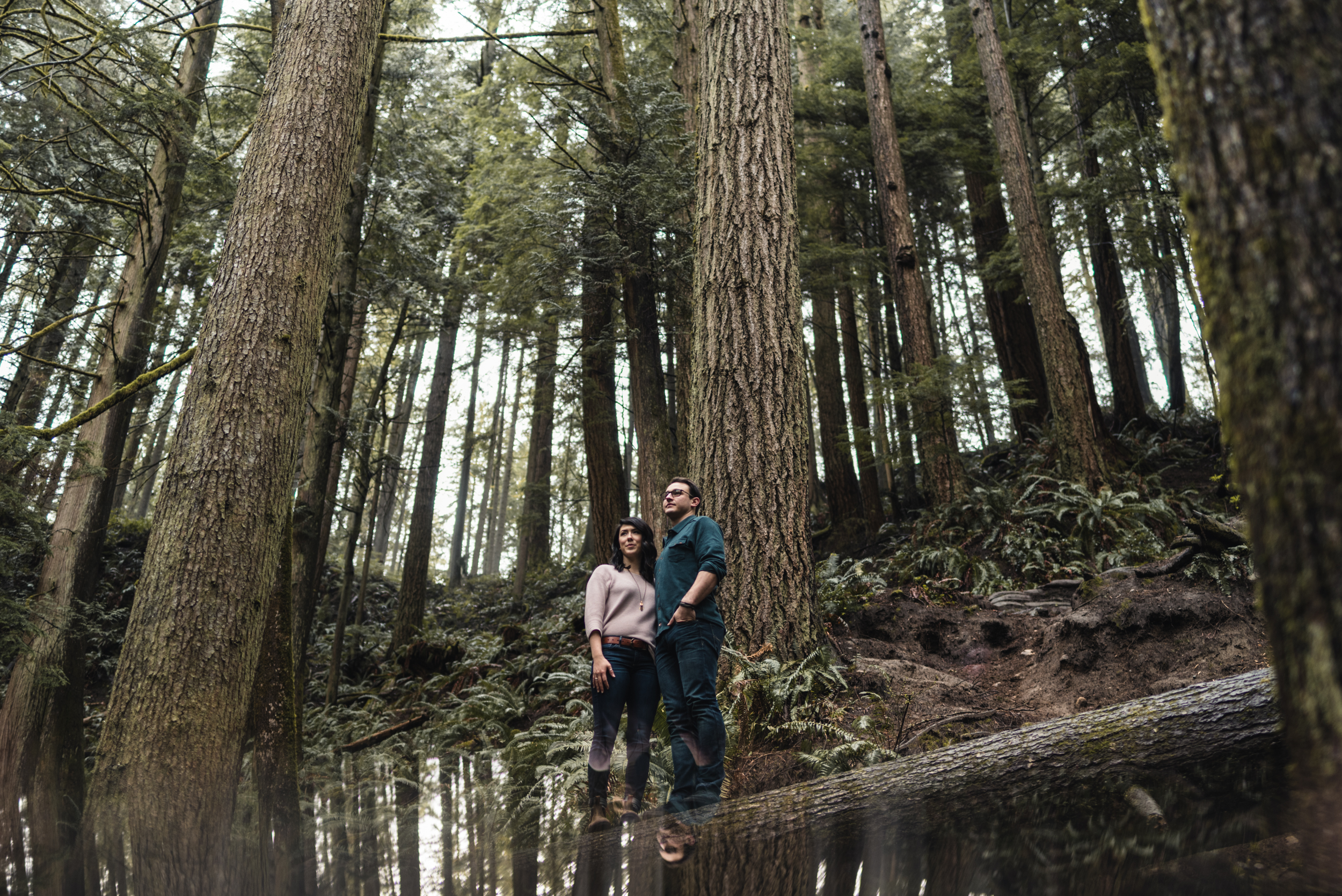 Couple standing on tree in forest