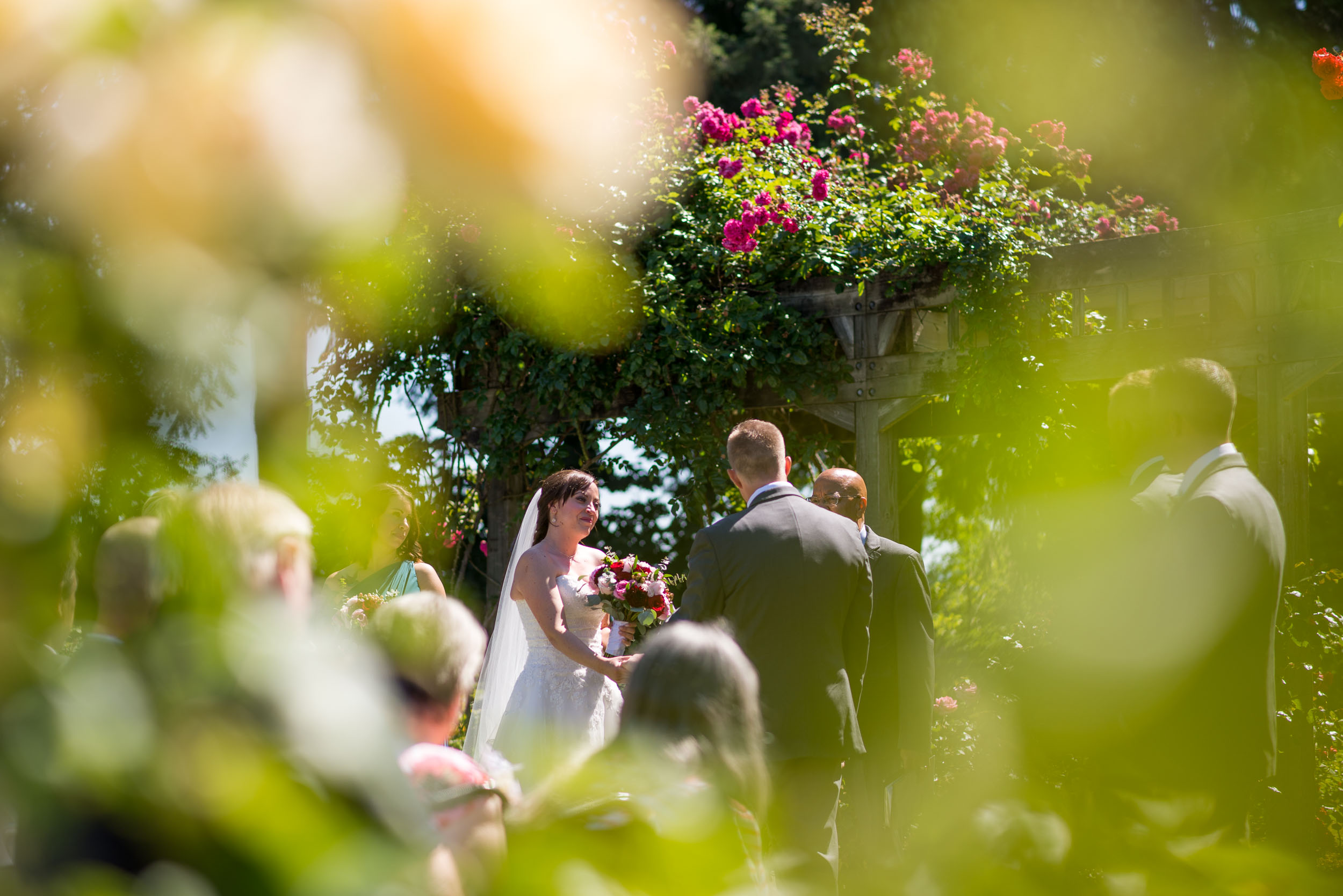 Wedding ceremony in rose garden
