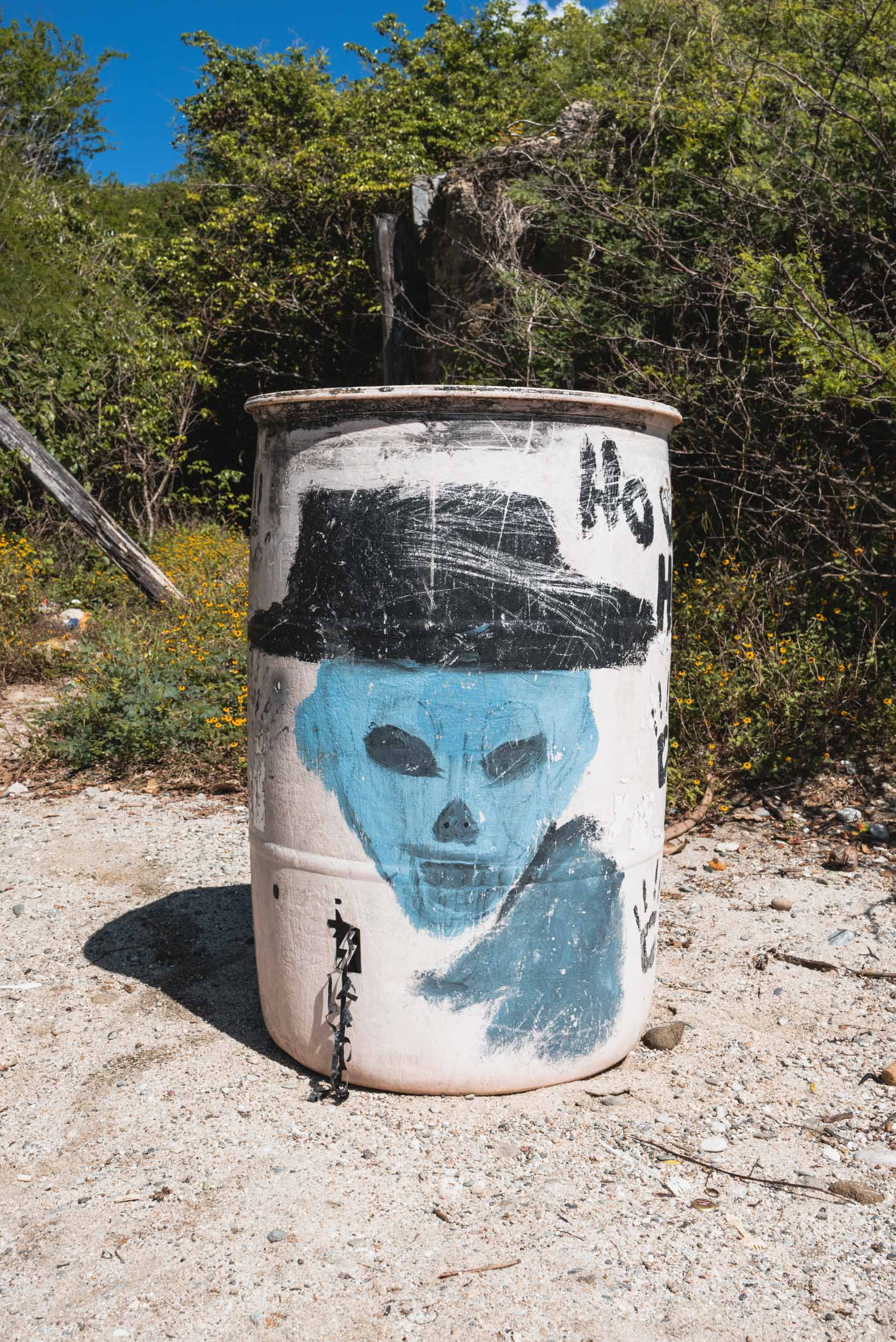 Riviera Nayarit beach painted garbage can