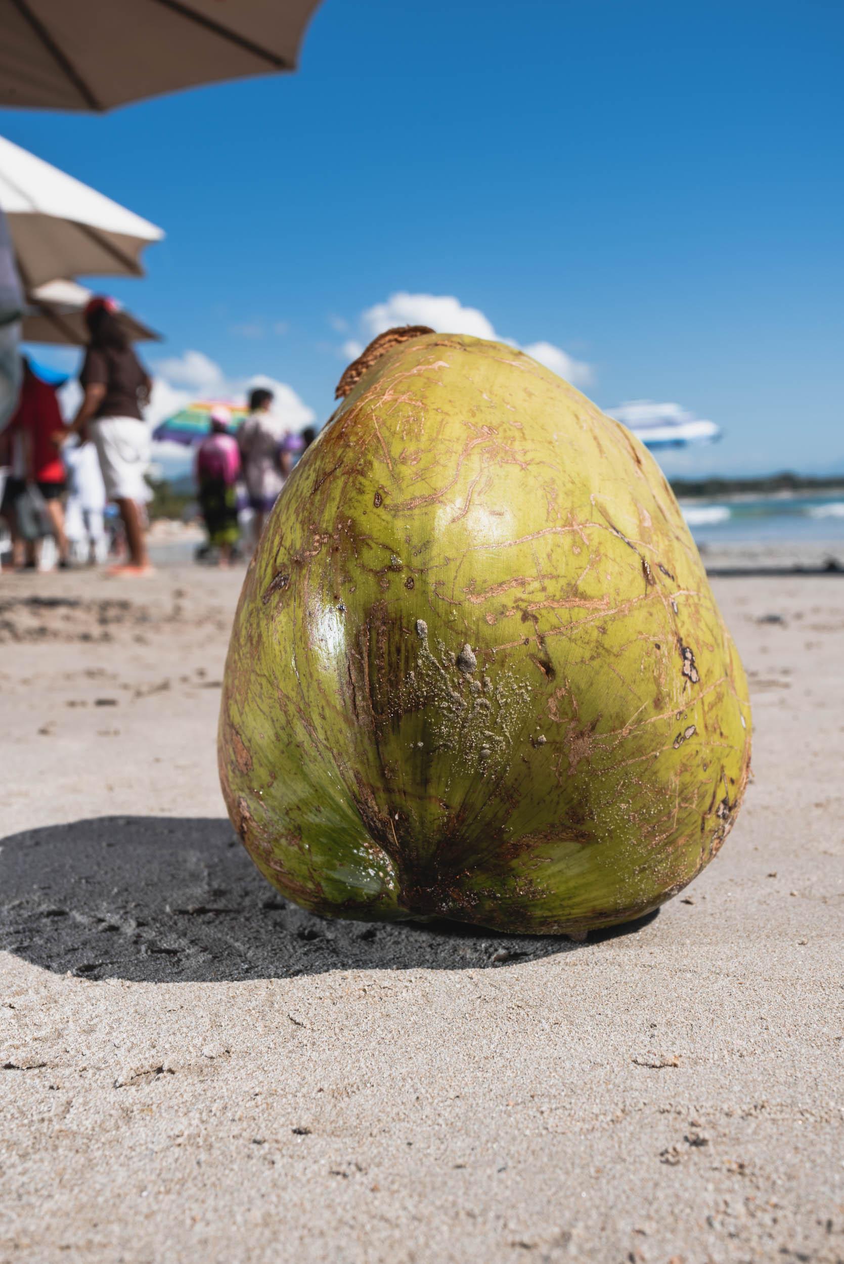 Punta Mita green coconut on beach