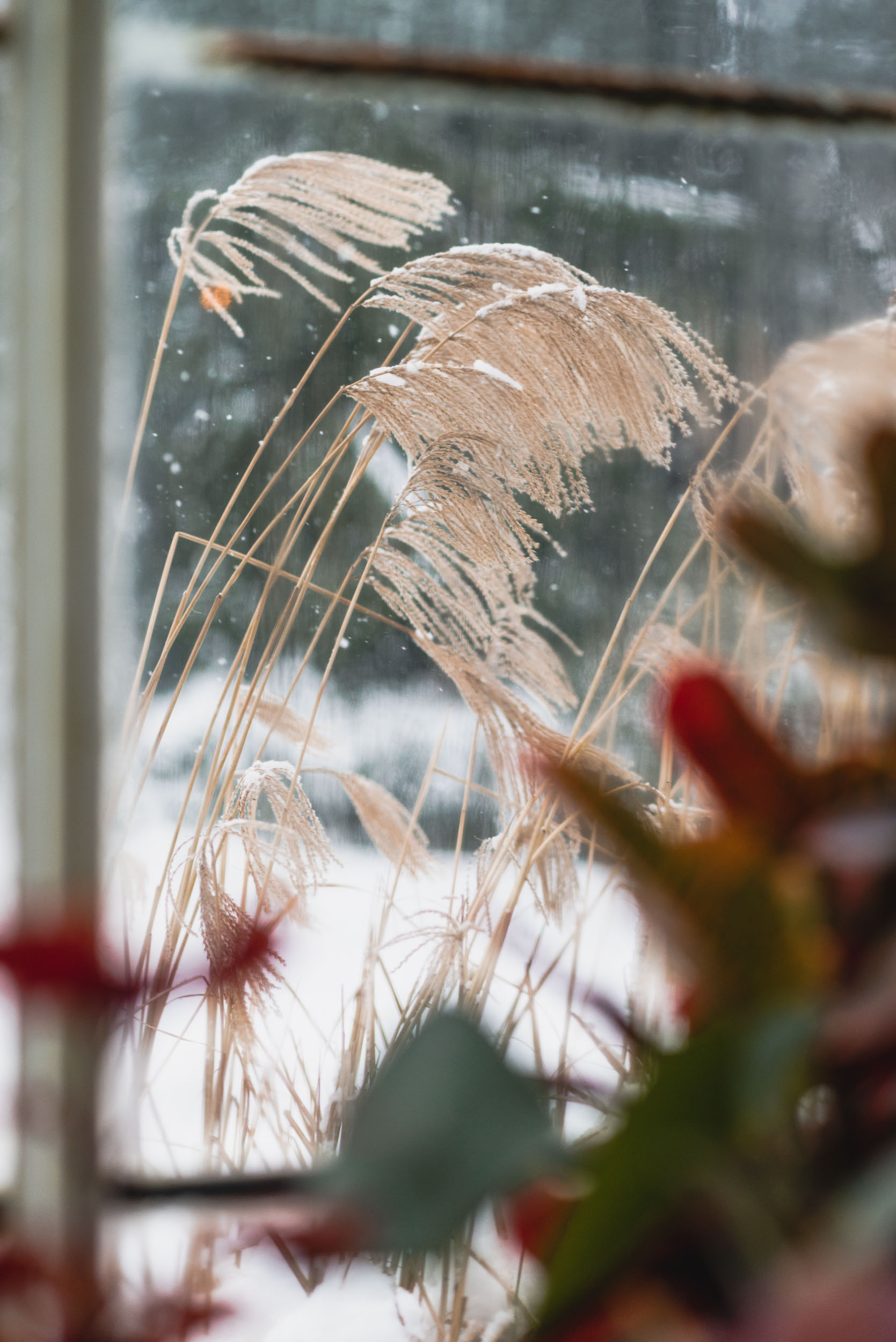 Snowy weather through conservatory window