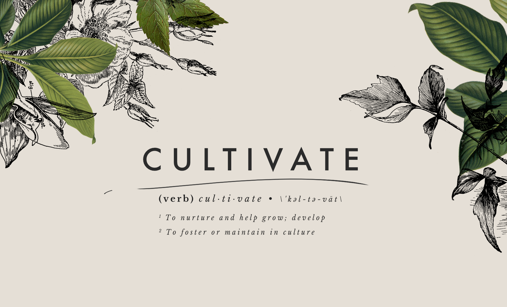 CultivateBanner.png