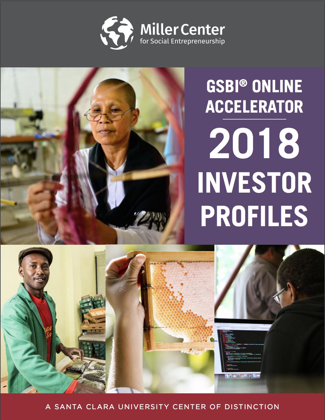 GSBI Online Cohort 13 Investor Profiles
