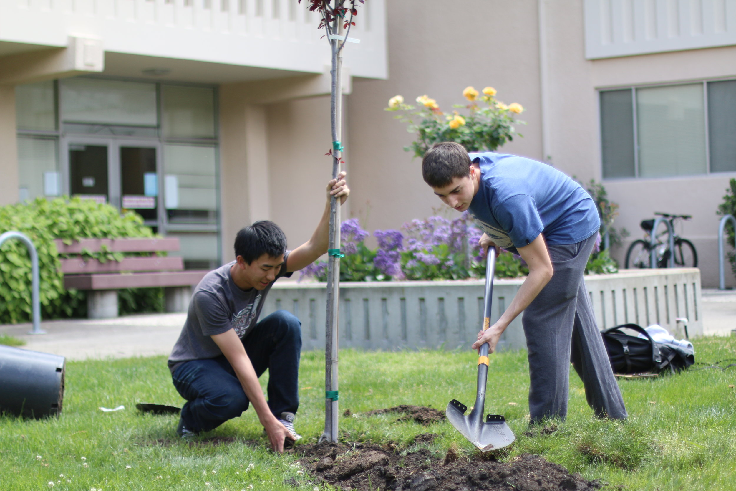 Tree planting through the Center for Sustainability (Source: Center for Sustainability)