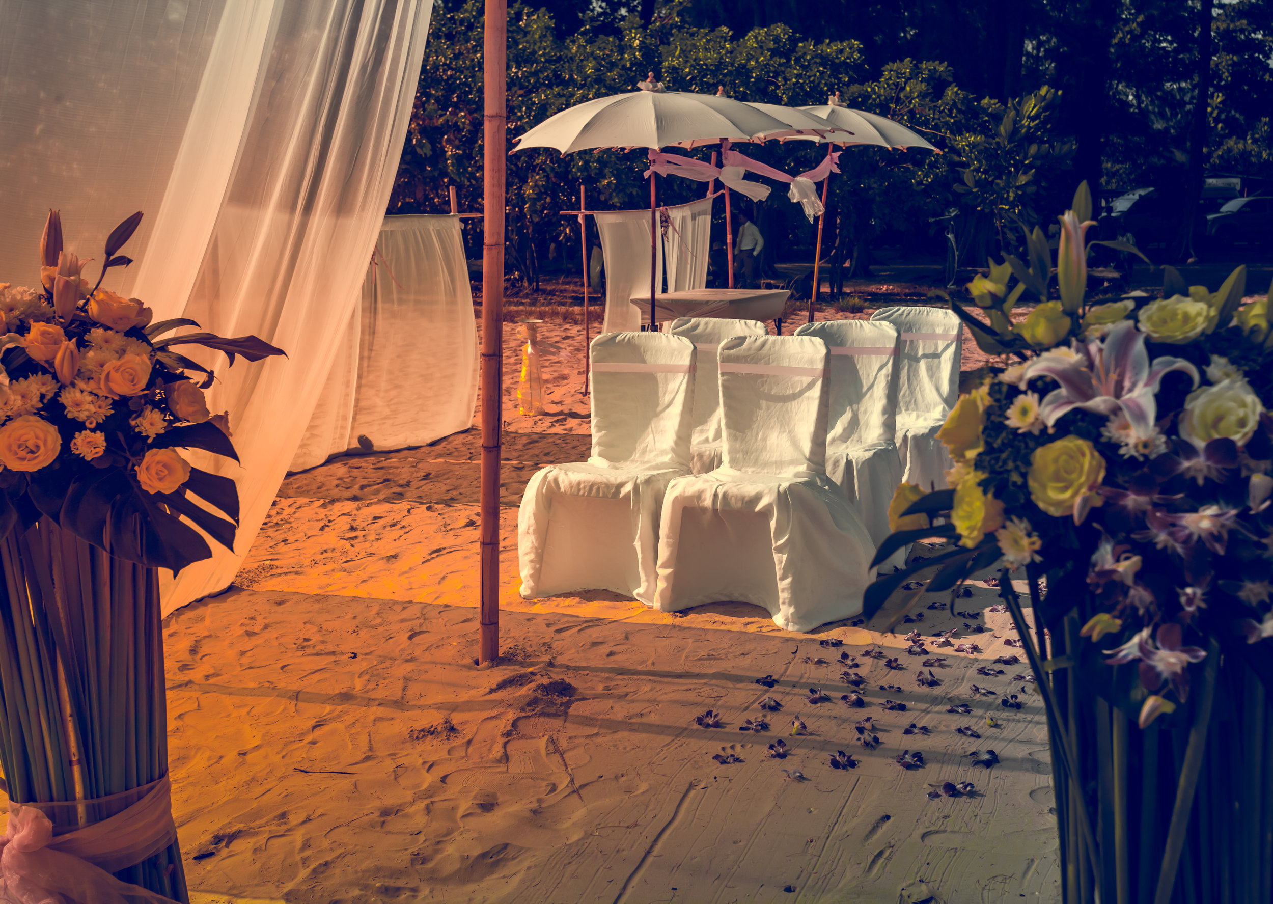 beach-wedding-PVAWMQX.jpg