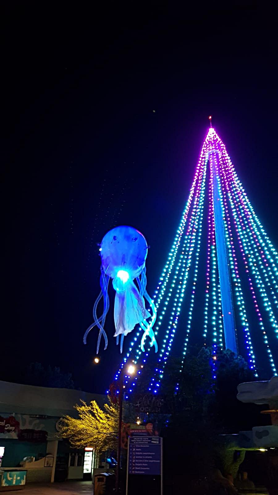 JellyFish - SeaWorld 4.jpg
