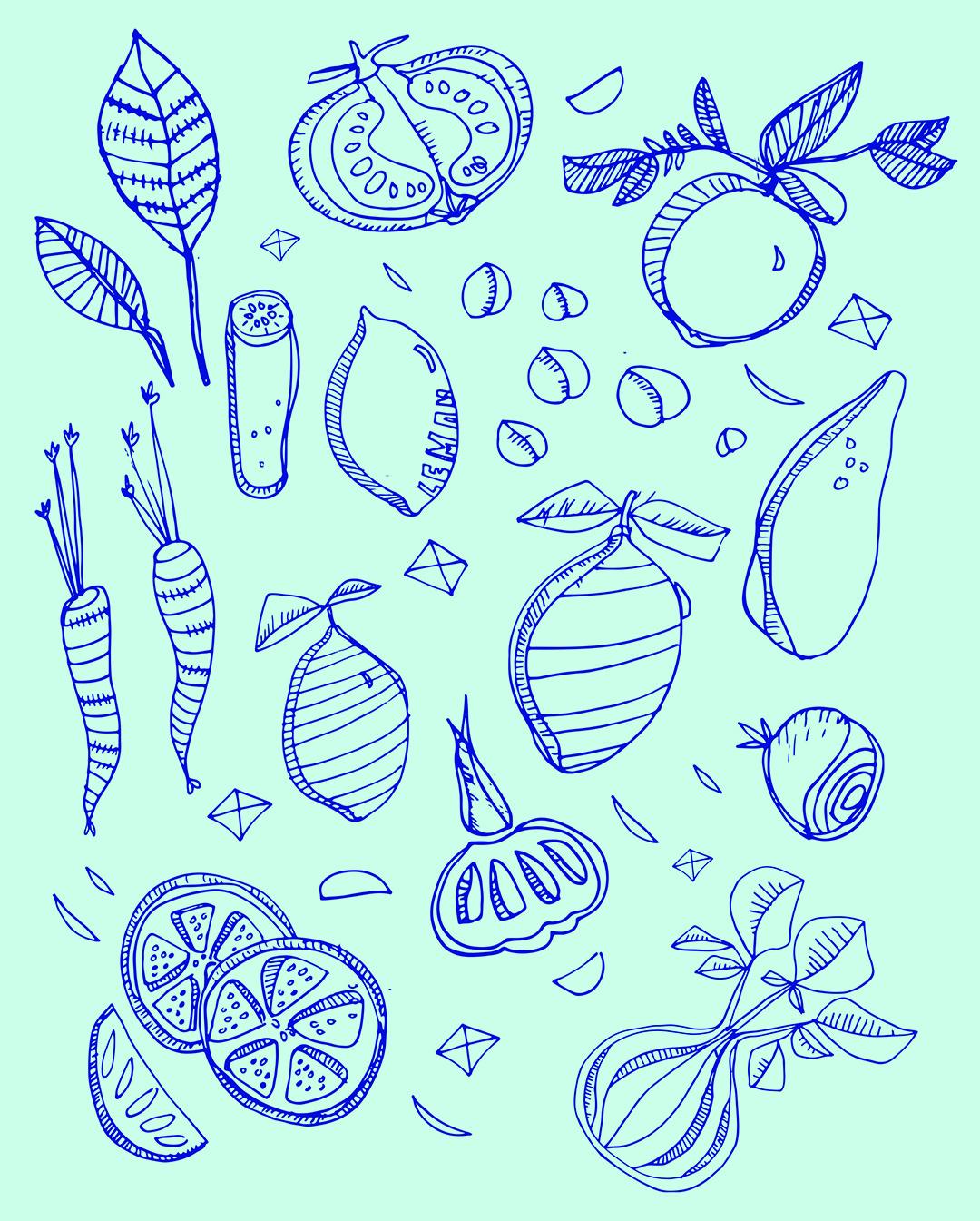 Illustration by  Lindsey