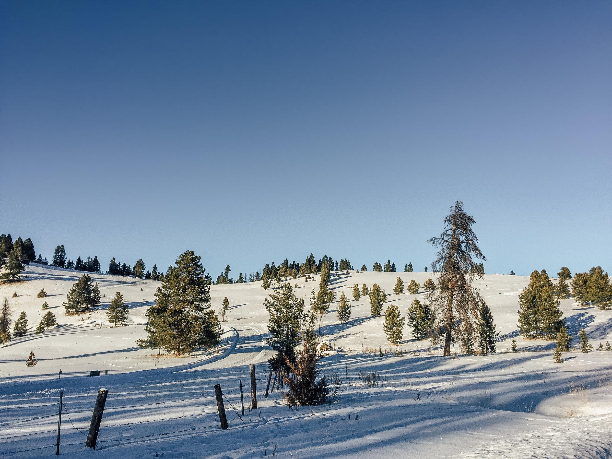 Lost Sapphire Ranch Lot