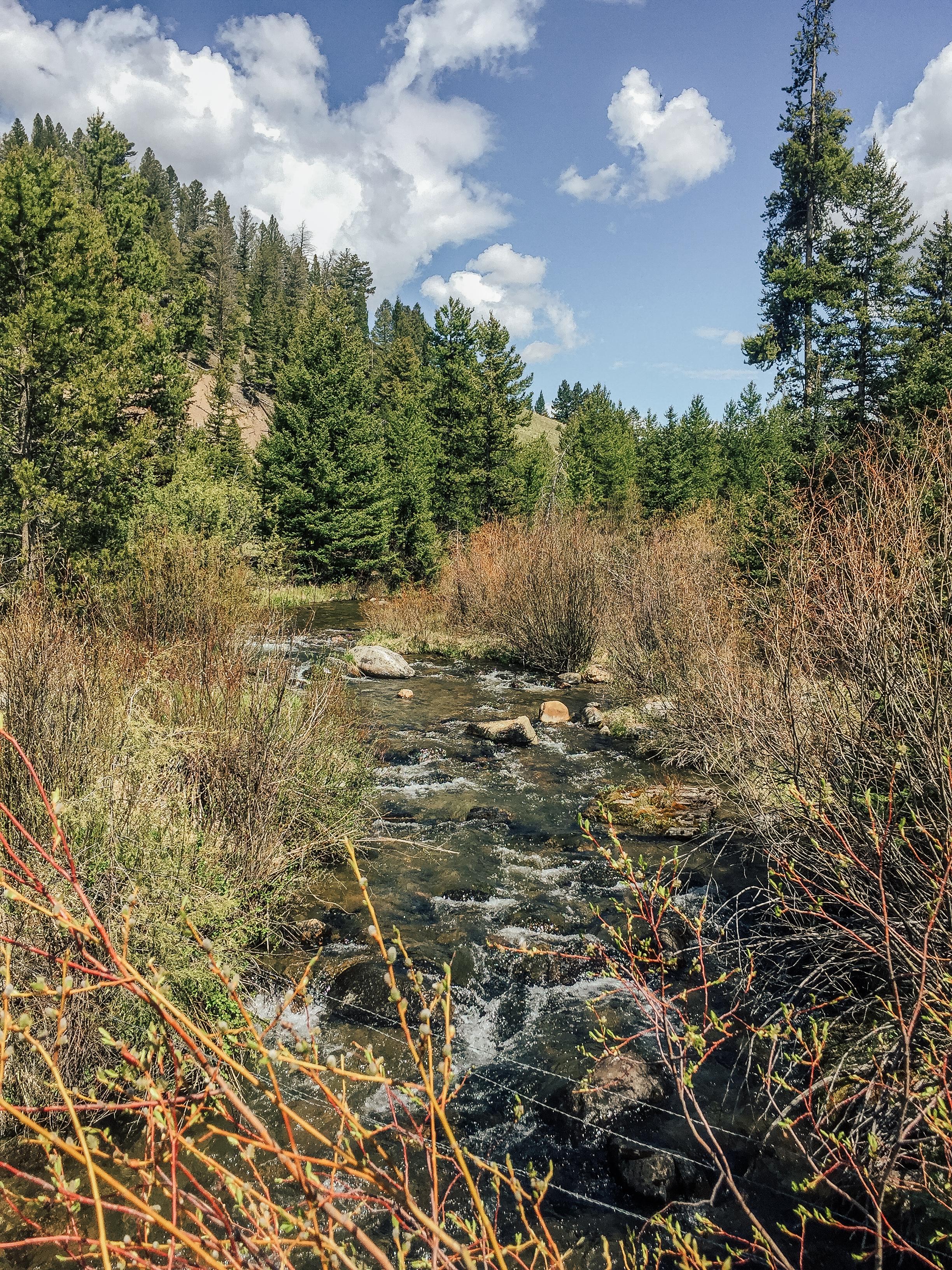 East Fork Rock Creek
