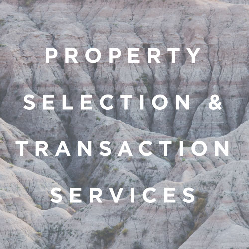 Site Selection  Value Analysis  Underwriting and Budgeting  Stakeholder Analysis  Owner's Rep Transaction Due Diligence  Entitlements