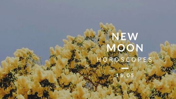 new moon in taurus blog title.png