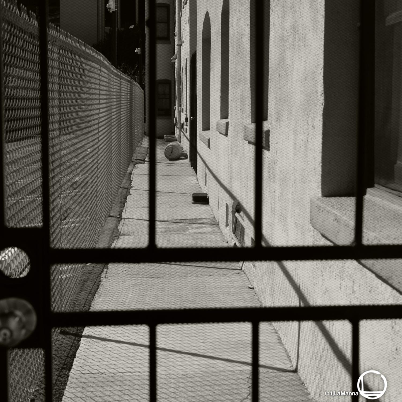 L1002174 2_©TjLaManna.jpg