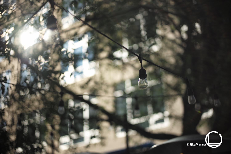 L1002235_©TjLaManna.jpg