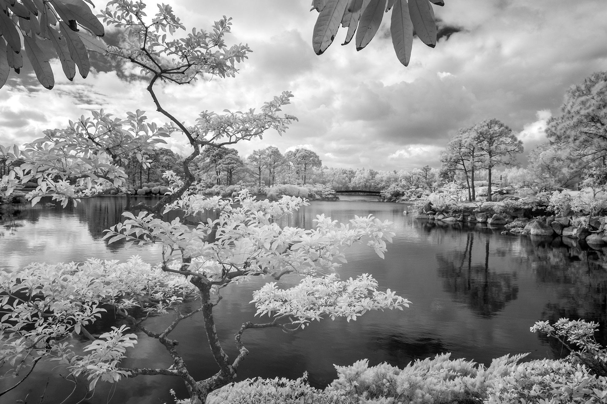 Morikami Gardens, Delray FL