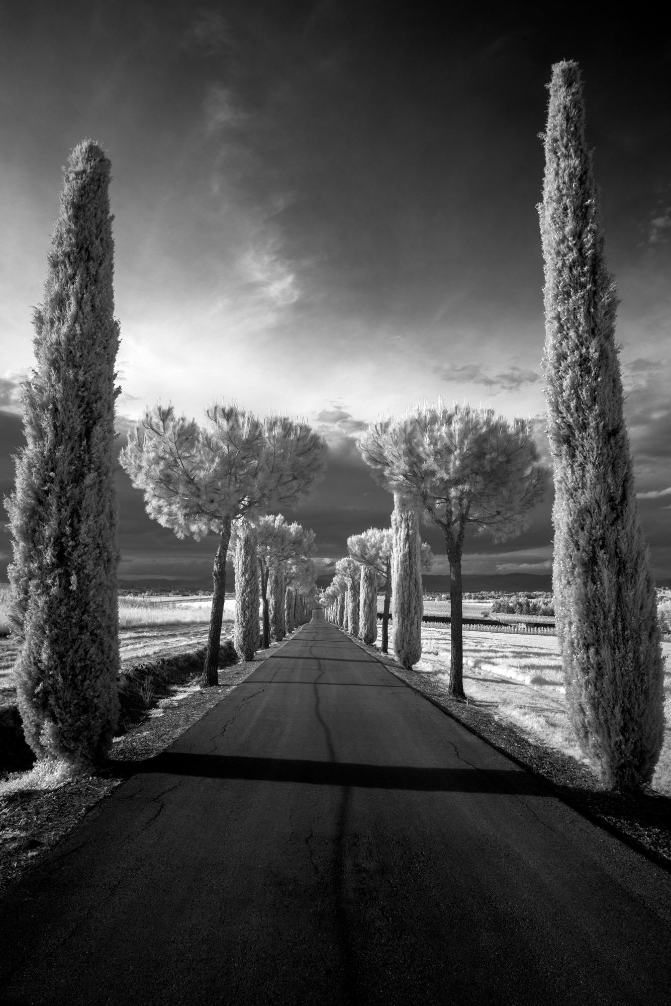 Paciano Italy
