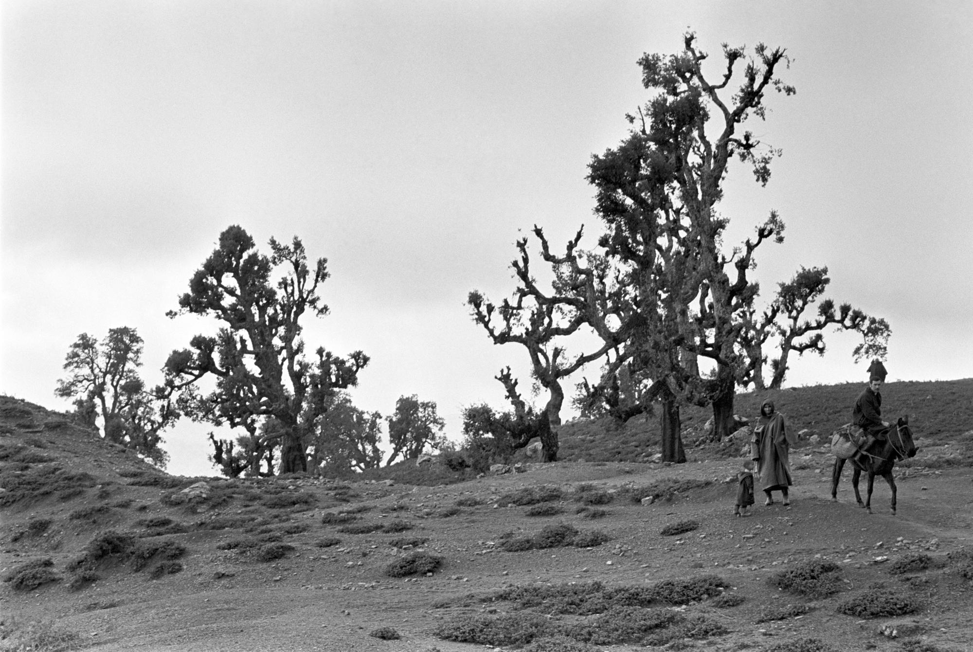 Atlas Mts, Morocco 1971