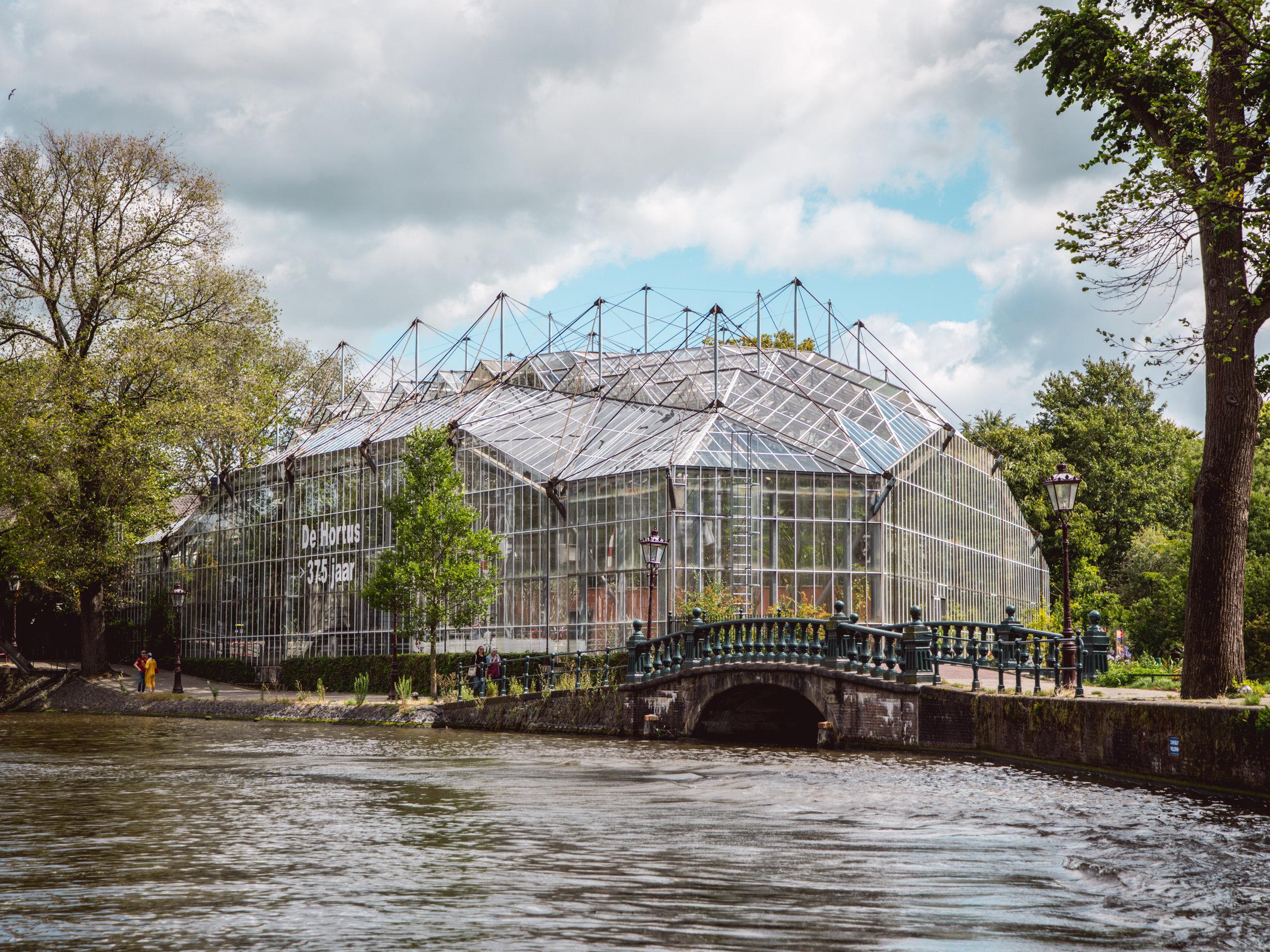 LilyHeaton_Hortus Botanicus_Amsterdam.jpg