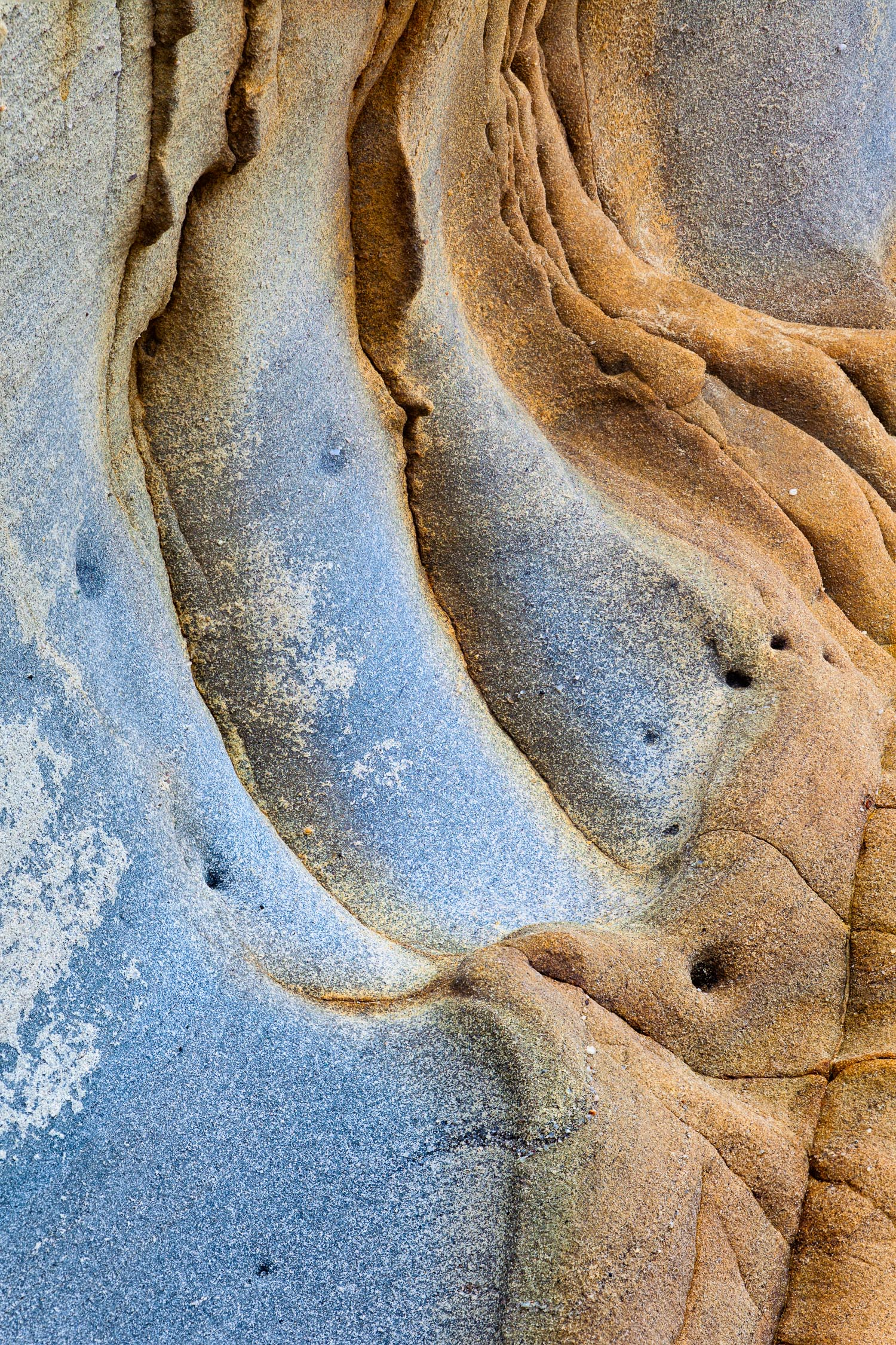 Coastal Sandstone II