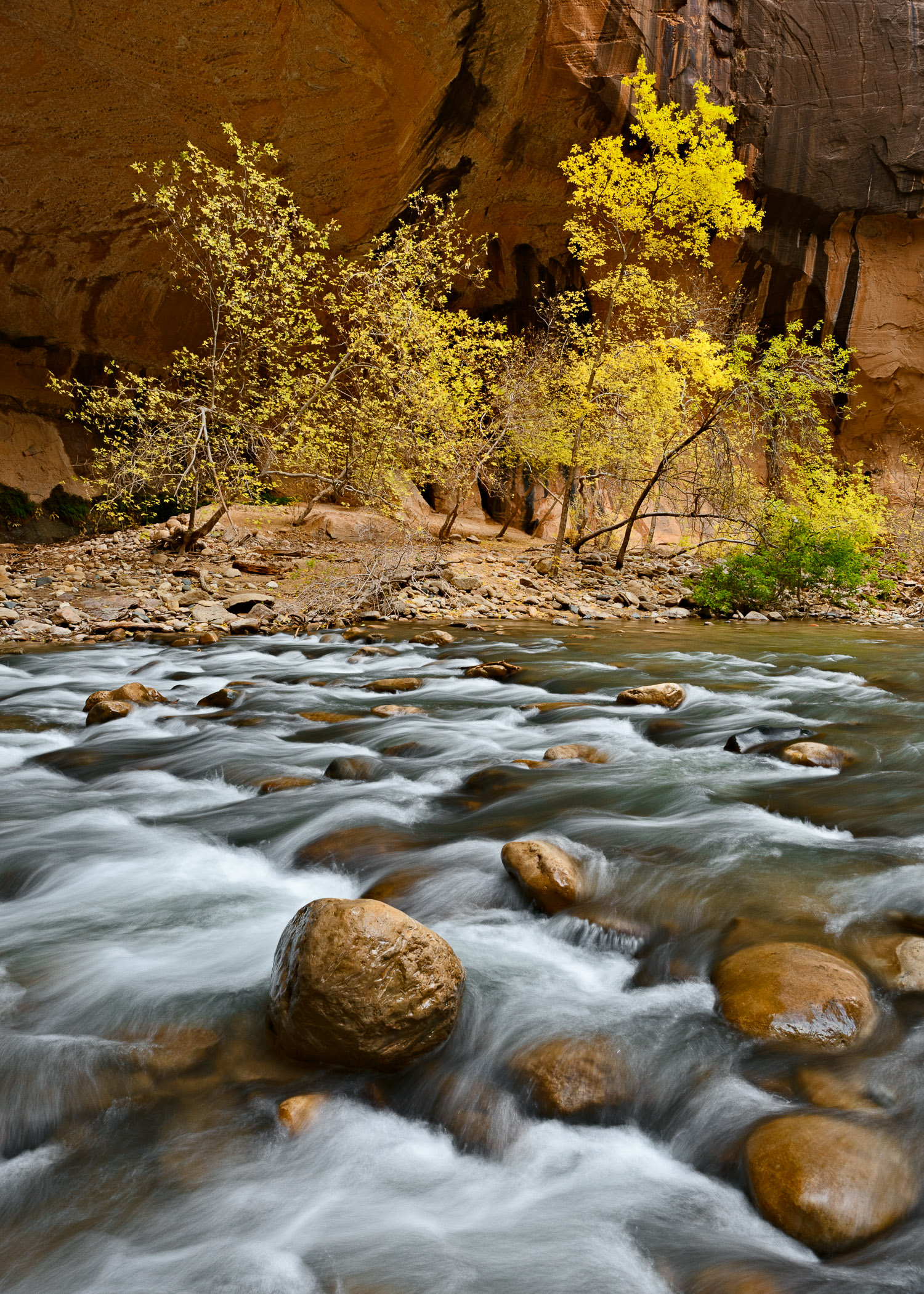 Golden Bend, Zion Canyon