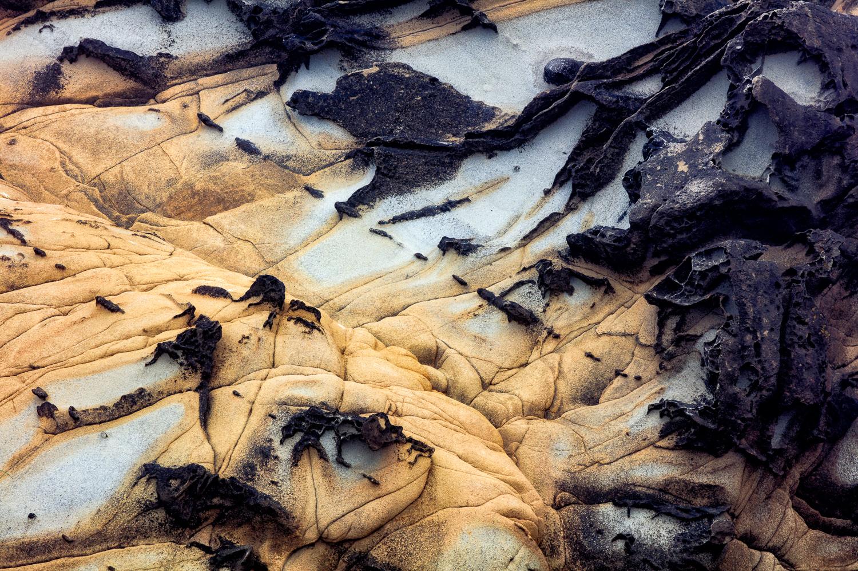 Coastal Sandstone IV