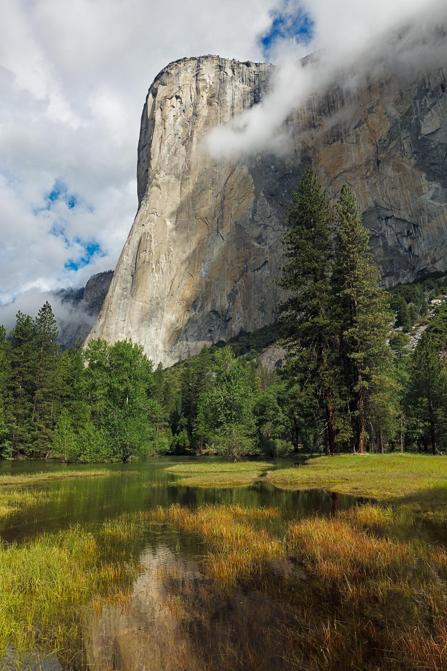 Flooded Meadow and El Capitan,   Yosemite Valley
