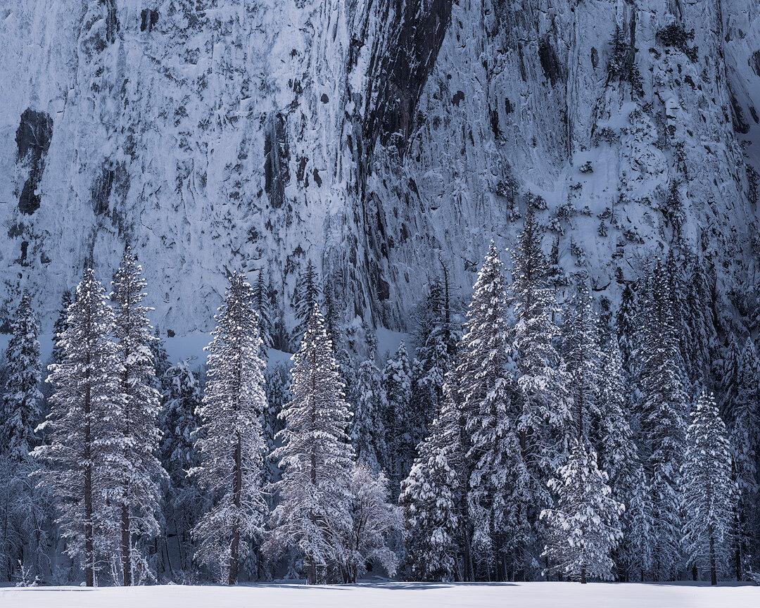 Winter Tableau